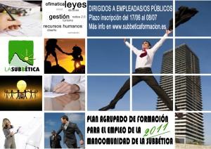 FORMACIÓN PARA EL EMPLEO 2011